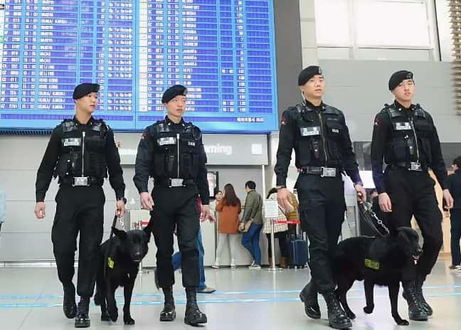 Миграционная служба Южной Кореи